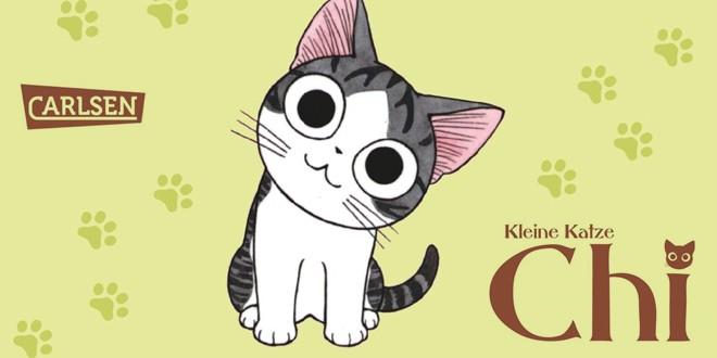 Kleine Katze Chi